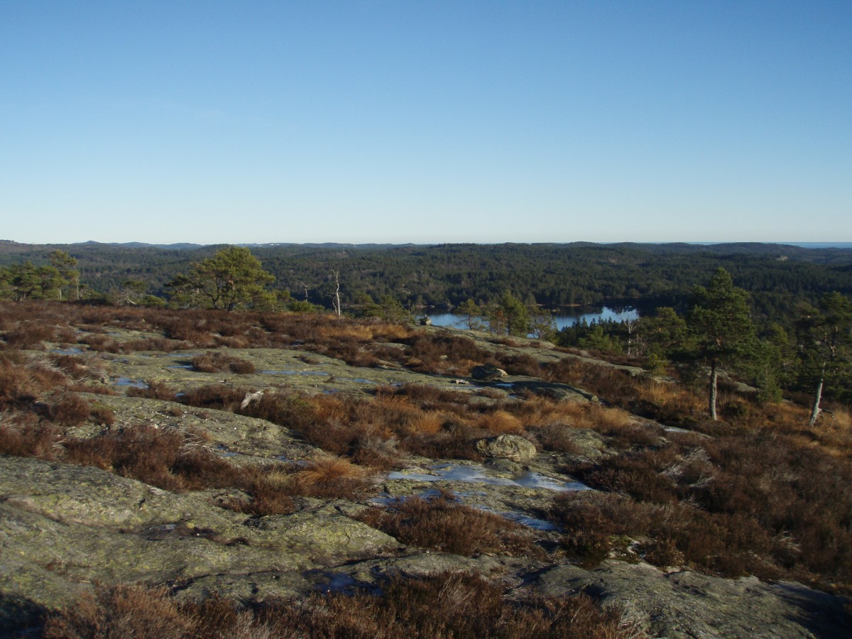 Tur til Rossefjell