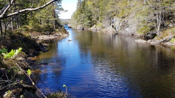 Kanalen ved Kaldvell