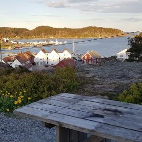 Ukens turforslag uke 32: Rundtur fra Sentrum via Springvannsheia, Reveråsen ogHolta